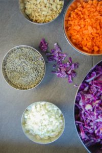 Vegetarian/Vegan gyoza dumpling ingredients