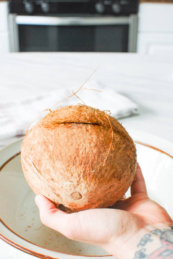 a mature coconut